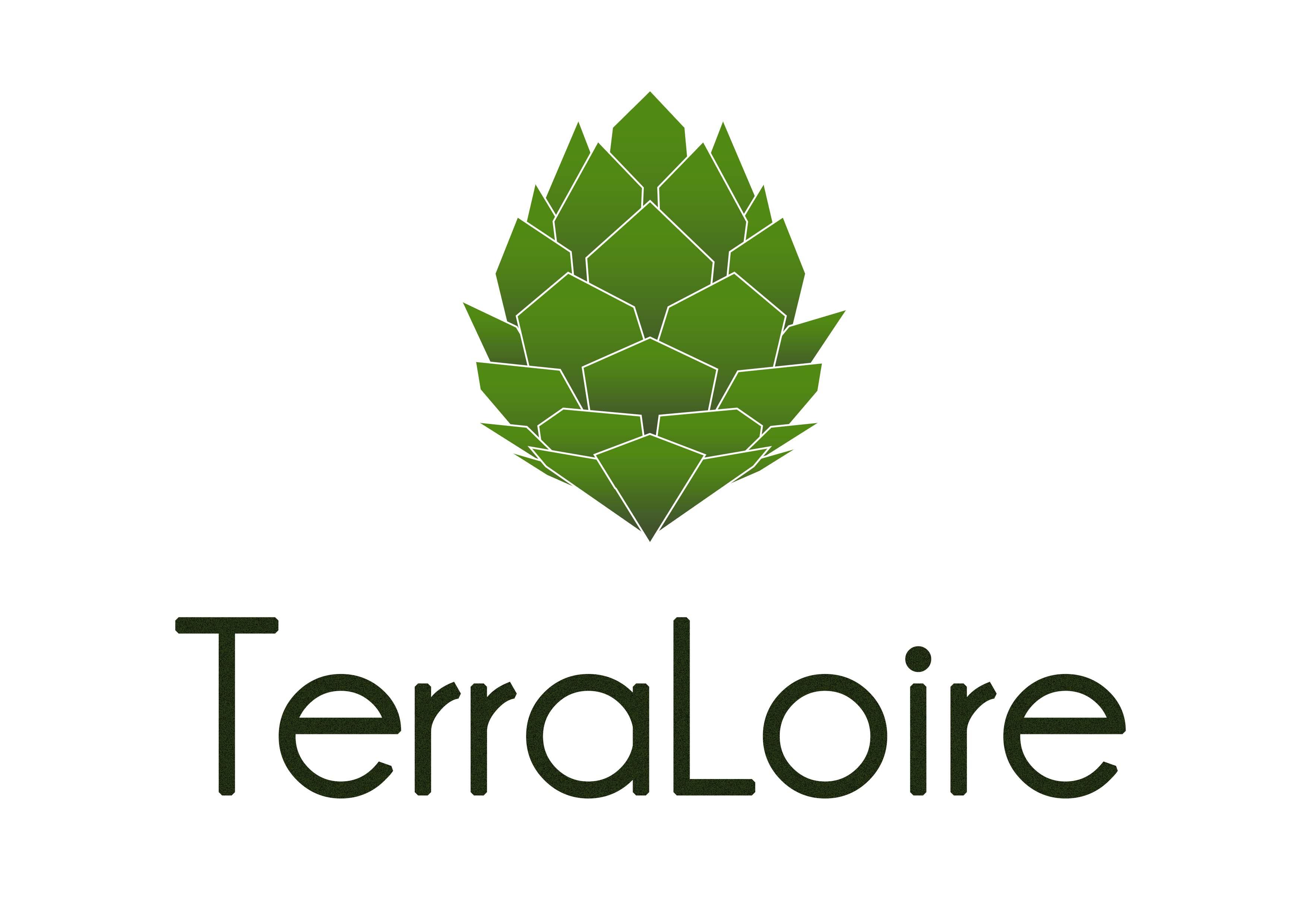 logo terraloire blanc